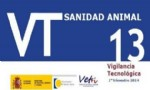 BVT 13