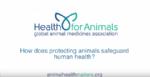vídeo, vetmasi, human health, nutrition, one health, una salud, zoonosis, vet+i, fundacion, sanidad animal, animal health