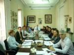 II Reunión del Grupo Consultivo de Vet+i
