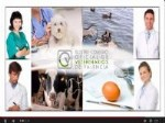 ilustre colegio de veterinarios de valencia, orgullosos de ser veterinairos