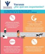 vacunas porque son importantes, vet+i, vetresponsable